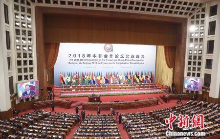 9月3日,中非合作论坛北京峰会在北京人民大会堂开幕,中国国家主席习近平出席开幕式并发表主旨讲话。盛佳鹏 摄