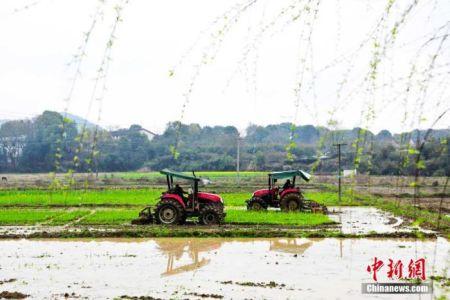 资料图:村民抓紧时机进行春耕备耕生产。 邓龙华 摄